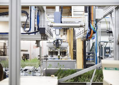 Automatic detection plant packer