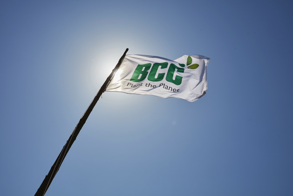 BCC wishes a great summer!